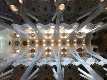 Inside the Sagrada Familia. First visited in the early 2000s still in scaffold. Now amazingly almost complete inside thanks to Australian architectural software speeding up the process of interpreting Gaudi's work without plans
